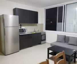 большая и просторная квартира